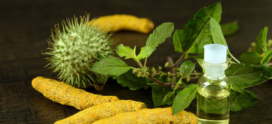 Goodness of Tulsi and Turmeric for Your Skin