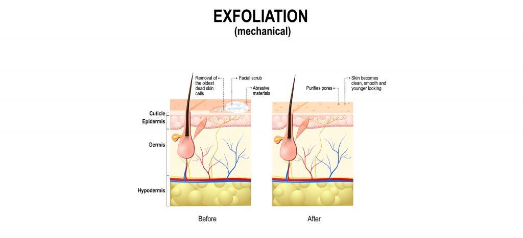 Exfoliation Guide