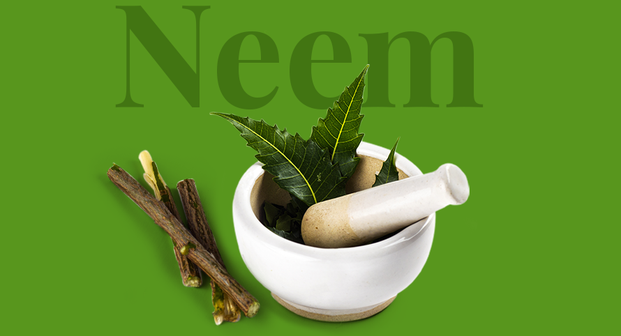 Purifying Neem Face Wash Ingredients from Everyuth Naturals